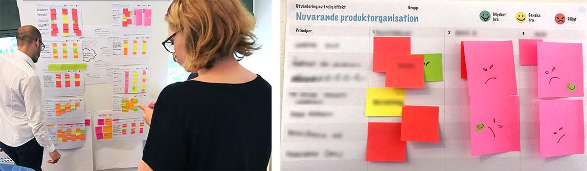 organization evaluation