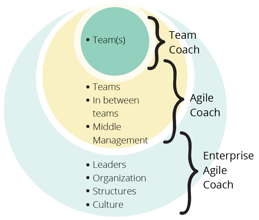 levels of agile coaching