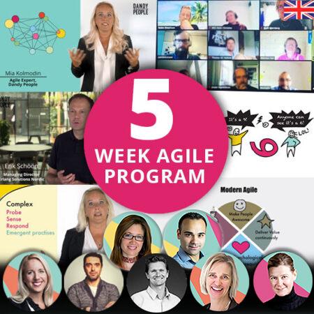 Exclusive 5 Week Agile Program – Online