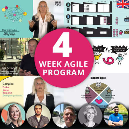 Exclusive 4 Week Agile Program – Online