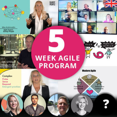 Exclusive 5 Week Agile Program – Online