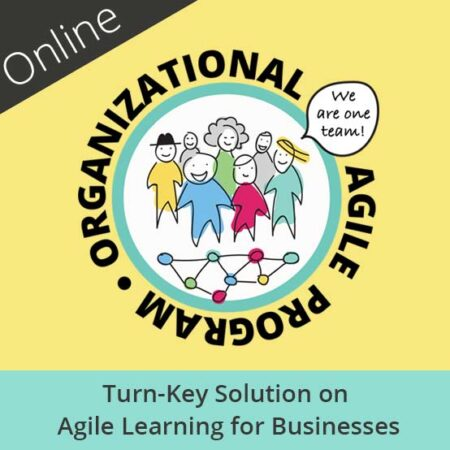 Digital Learning for Businesses – an Organizational Agile Program
